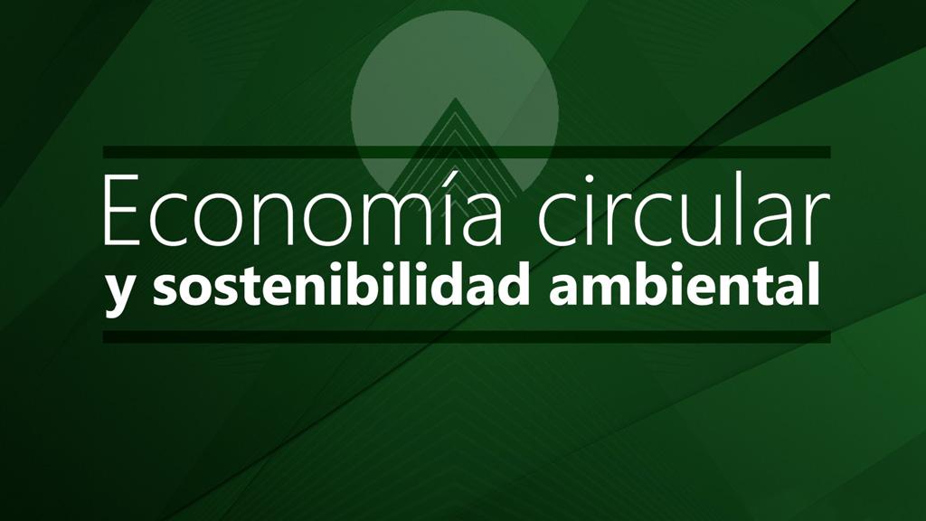 Curso de Economía Circular y Sostenibilidad Ambiental