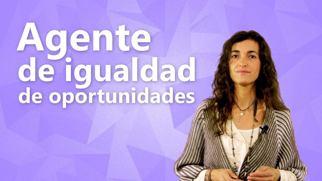 Curso de Agente de Igualdad de Oportunidades