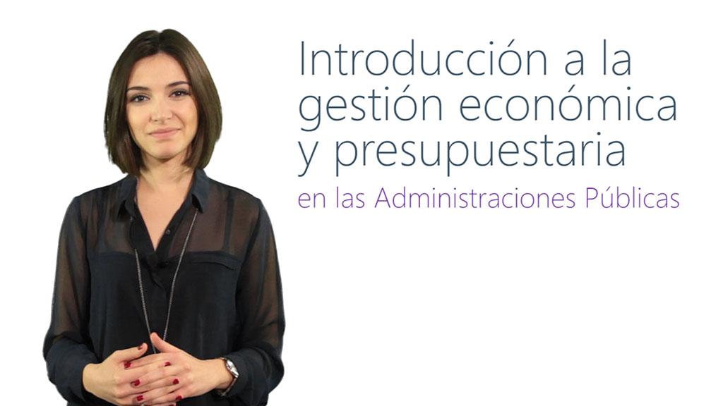 Curso de Introducción a la Gestión Económica y Presupuestaria en las Administraciones Públicas